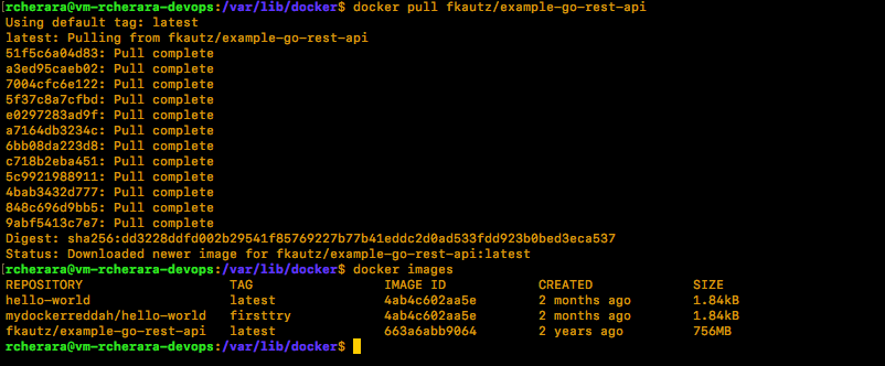 docker pull output result